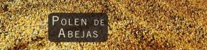 polen de abejas 300x73 - NUTRICION: NOVEDADES, MITOS Y CONSEJOS PRACTICOS