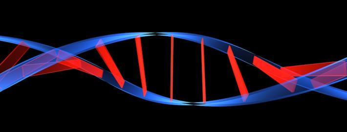 genetica humana 1080x810 710x270 - ASPECTOS GENÉTICOS QUE INFLUYEN EN LA DETECCIÓN DEL TALENTO DEPORTIVO