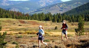 trail 300x163 - trail