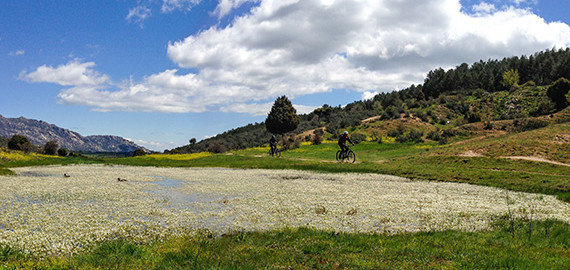 Unión de 2 fotos espectaculares de Juan Carlos 570x270 - ENTRENAR TRIATLÓN O CICLISMO CON ALERGIA