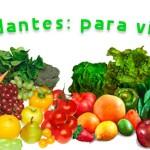 antioxidantes2 150x150 - ASPECTOS QUE DEBEMOS DE TENER EN CUENTA DEL CICLOS MENSTRUAL A LA HORA DE PLANIFICAR UN ENTRENAMIENTO