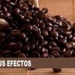 cafeina efectos 150x150 - TODA LA VERDAD SOBRE LOS CALAMBRES MUSCULARES EN TRIATLÓN, CICLISMO,...