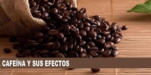 cafeina efectos 495x248 - RESULTADOS DE LOS DEPORTISTAS DESABI DURANTE EL FIN DE SEMANA