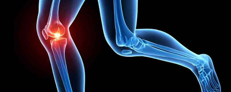 Curso Superior Anatomia Estiramientos Salud Deportiva 1 800x321 - 10 ERRORES QUE NOS LLEVAN A SUFRIR LESIONES