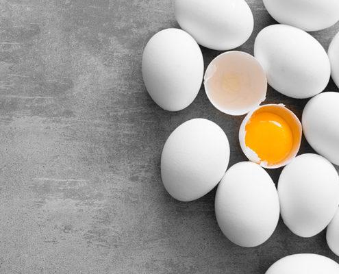 funiber huevos 495x400 - FRUTAS QUE DEBEMOS DE CONSUMIR EN PRIMAVERA