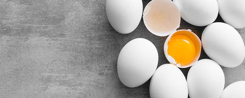 funiber huevos 800x321 - ¿QUÉ ES MEJOR PARA RECUPERAR TRAS UN DURO ENTRENAMIENTO, CLARA DE HUEVO O LA  CLARA JUNTO A LA YEMA?