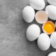 funiber huevos 80x80 - 10 DEPORTISTAS DESABI SUBEN AL PODIUM DURANTE EL PASADO FIN DE SEMANA CONSIGUIENDO 5 VICTORIAS.