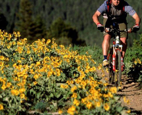 mountain biking 1024x529 495x400 - FRUTAS QUE DEBEMOS DE CONSUMIR EN PRIMAVERA