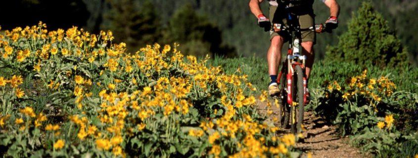 mountain biking 1024x529 845x321 - 3 CONSEJOS PARA ENTRENAR CON ALERGIA