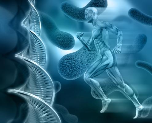 mapeamento genético 495x400 - NUESTROS DEPORTISTAS SUMAN 246 PODIUMS CON 112 VICTORIAS