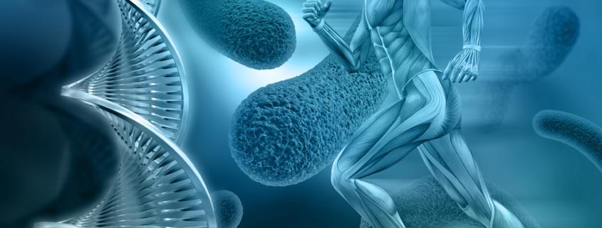 mapeamento genético 845x321 - ¿SABES EL % DE INFLUENCIA DE LA GENÉTICA EN EL RENDIMIENTO DEPORTIVO?